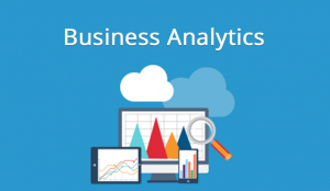 Biusiness Analytics
