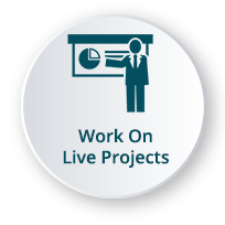 Work on live Data Science projects