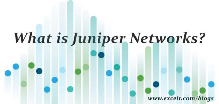 juniper1.jpg